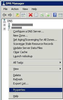 DNS-1